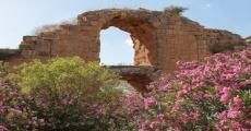 Afrin Roman Aqueduct